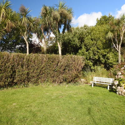 A garden bench on a lawn with palm trees in the background